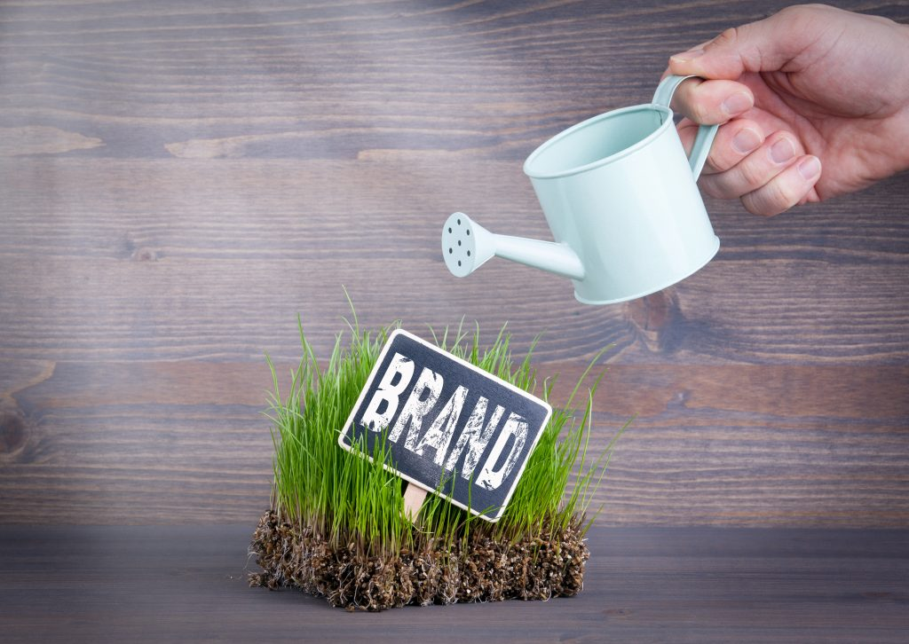 Build and enhance your new RIA's brand with Wealthcare's creative marketing programs